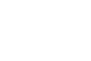 Perspective_Pinks logo